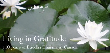 essays in gratitude living dharma centre vancouver buddhist temple essays in gratitude living dharma centre